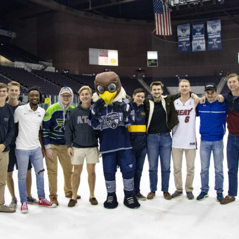 Ice Flyers Game